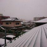 今年の初雪!