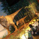 茨城県自然博物館にいきました!