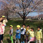 わらびのこども達~春の陽気と笑顔と桜~