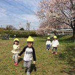 わらびのこども達~ボールと公園と桜~