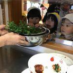 でんしゃ・小松菜のおはなし!